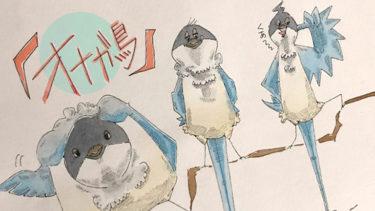 北京によくいる鳥