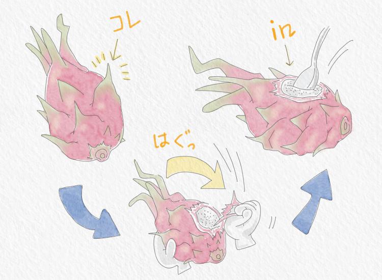 ドラゴンフルーツ食べ方イラスト