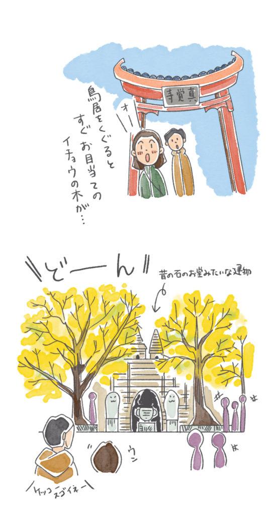 樹齢600年の銀杏の木を見に