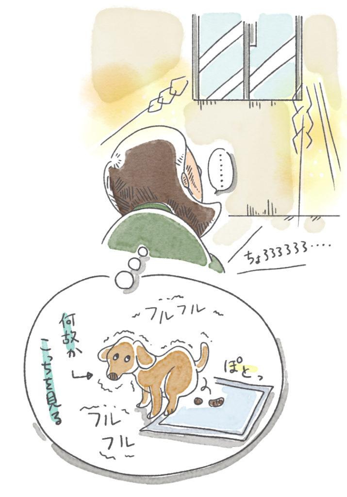 你好トイレで実家の犬を思い出す