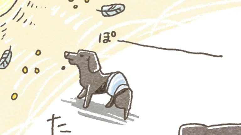 シニア犬の日常